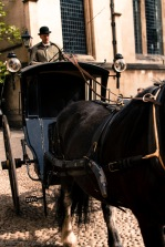 carriage-1