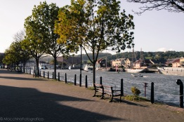 waterfront-1
