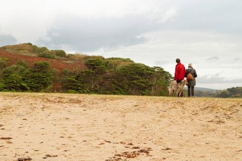 beach walkers-1