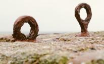harbour rings v2-1