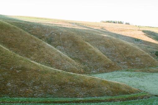 curving land 3-1