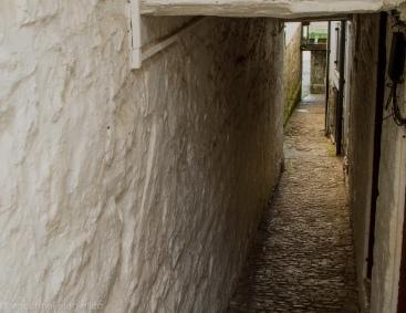 alley v2-1